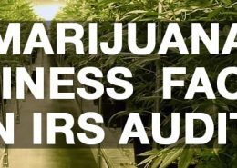 Marijuana-Business-Facing-IRS-Audit