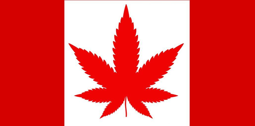 canada canabis industry