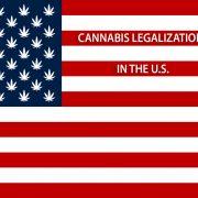 US cannabis medical marijuana legalization