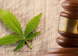 cannabis-laws
