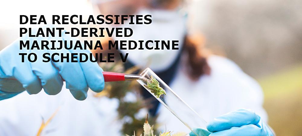 DEA Reclassifies Plant-Derived Marijuana Medicine To Schedule V