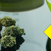 cannabis business irs tax audit and federal regulation