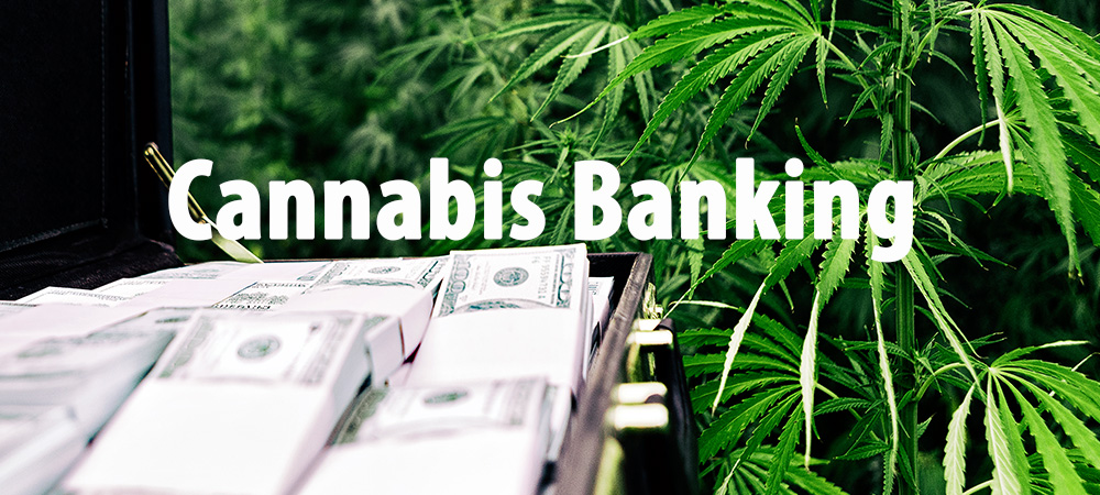 cannabis business banking law